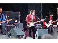 Bob Dylan in concert in Turin