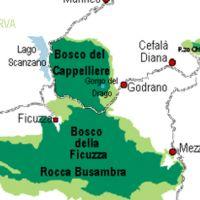 Riserva naturale orientata Bosco della Ficuzza