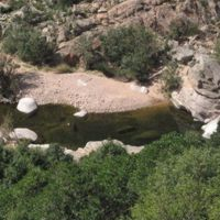 Parco naturale regionale Molentargius - Saline Sardegna