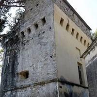Torre di Punta Pagana Genova